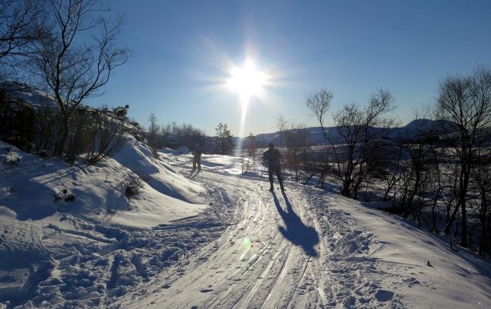 Olalia (Vindafjord)